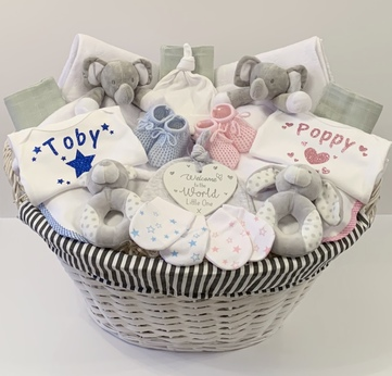 Twin Baby Gift Basket